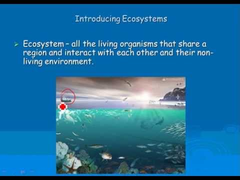 2  Ecosystems Biotic and Abiotic Factors