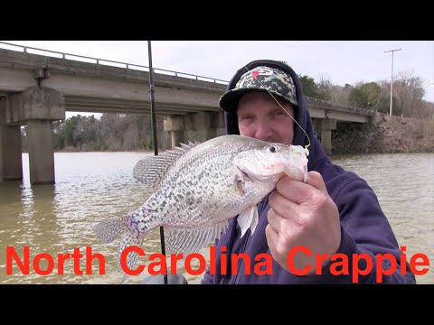 North Carolina Crappie Fishing