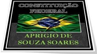 CONSTITUIÇÃO FEDERAL -  ART 40   - PARTE 1