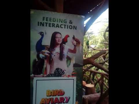 Bird Park-Taman Safari Indonesia