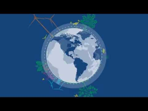 AIESEC - Why We Do What We Do