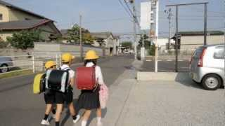 Travel Japan - Morning School Children