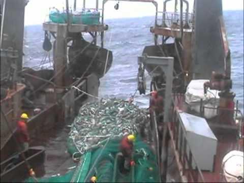 Cod Fishing Off Newfoundland 2004