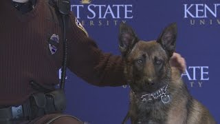Kent State's Newest Officer: Dexter, The Explosive-detection Dog