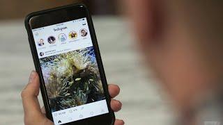 Video How to fix Facebook messenger keeps crashing download MP3, 3GP, MP4, WEBM, AVI, FLV Oktober 2017