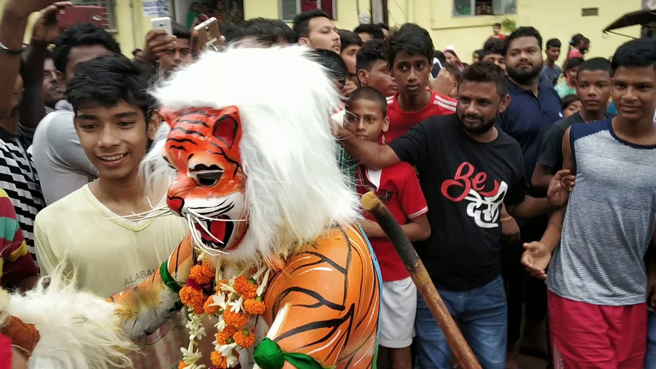 Download Dhatkidih Bagh 2018 new videos