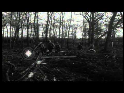 US infantrymen advance through Hurtgen Forest in Germany during World War II. HD Stock Footage
