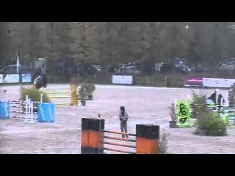 Raspail du Theillet -  Concours Grand prix 1m30