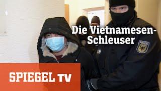 Die Geschäfte der Vietnamesen-Schleuser: Schlag gegen die Hintermänner
