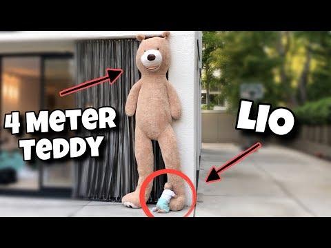 Ich habe Lio den größten TEDDY der Welt gekauft 😨 | Bibi