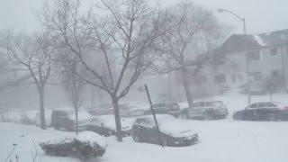 Start of Winter Storm Jonas in Queens (New York City)