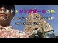 日本人たった一人!?どきどきシンガポールの旅【スリ・スリニヴァサ・ペルマル寺院】