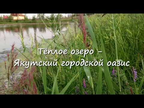 интим знакомства Теплое Озеро