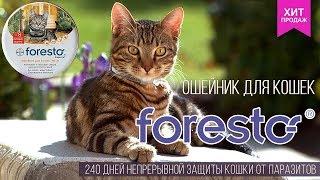 Форесто · Ошейник для кошек от блох и клещей · Foresto