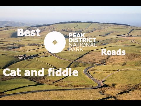 Rourke S Cat And Fiddle