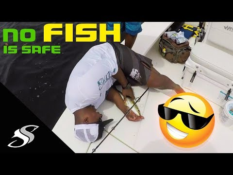 What a Salty Scales Fishing Charter Looks Like - Raw Video