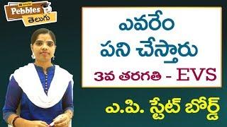 Yevaru emi pani chestharu (Full Lesson) 3rd Class EVS-Telugu Video Lessons |  A.P Telugu Syllabus