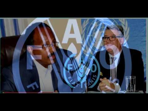 Dowladda Somalia oo Dalka ka saaraysa Madaxa Hay,adda  FAO