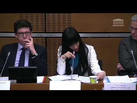 Stéphanie Do-Comité d'évaluation et de contrôle-Rapport coûts et bénéfices de l'immigration-22/1/20