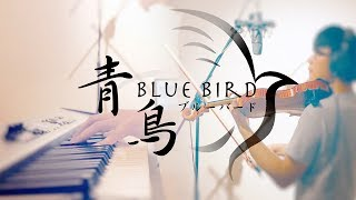 SLSMusic|火影忍者疾風傳 Naruto Shippuden OP3|青鳥 Blue Bird - 生物股長|Violin & Piano Cover
