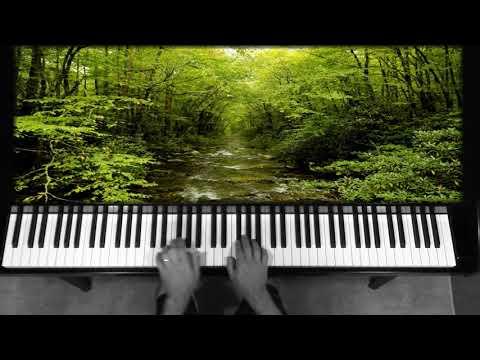 Dennis Alexander : A Splash of Color, Forest Green