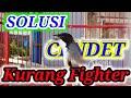 Terapi Cendet Kurang Fighter Akan Langsung Emosi Dan Bongkar Isian Dengan Terapi Ini  Mp3 - Mp4 Download