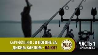 Карпфишинг: В погоне за ДИКИМ КАРПОМ - на ЮГ! Часть 1