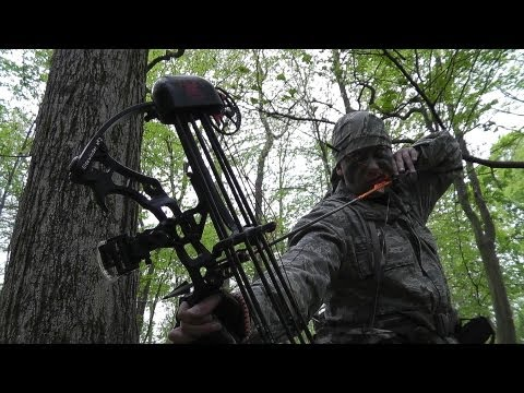 Deer Hunting With Bow And Arrow- WARNING: Impact Shots.