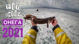 Зимняя рыбалка на Онежском озере 2021 Налимы