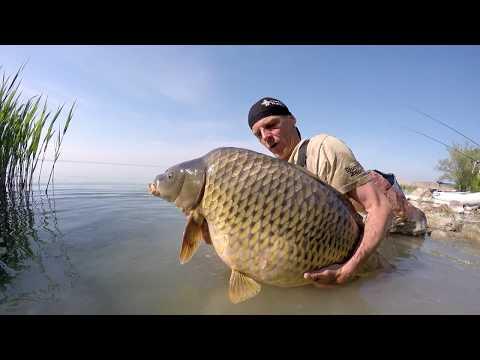 Carpfishing On Big Lakes In Europe - Zsolt Bundik