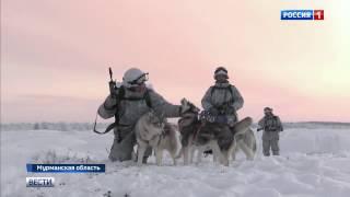 Где и как служат арктические стрелки - от Мурманска до Новосибирских островов