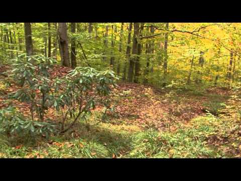 South East Bulgaria Biodiversity Project - Autumn