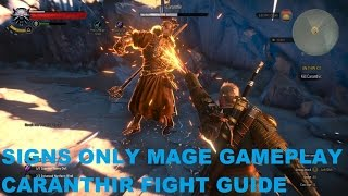 Witcher 3 - Mage gameplay signs only - Caranthir Fight