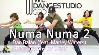 Numa Numa 2 - Dan Balan (feat. Marley Waters) / Dance Fitness Choreography / Wook's Zumba® Story
