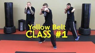 Beginner Krav Maga - Yellow Belt/Level 1 - Class #1 (Warm Up, Follow Along Drills)