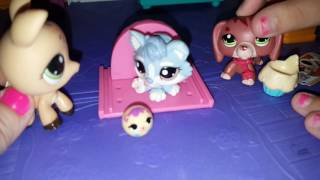 Lps 10 things I hate about babysitters