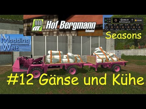 LS17   Hof Bergmann Reloaded   Seasons   #12 Gänse und Kühe