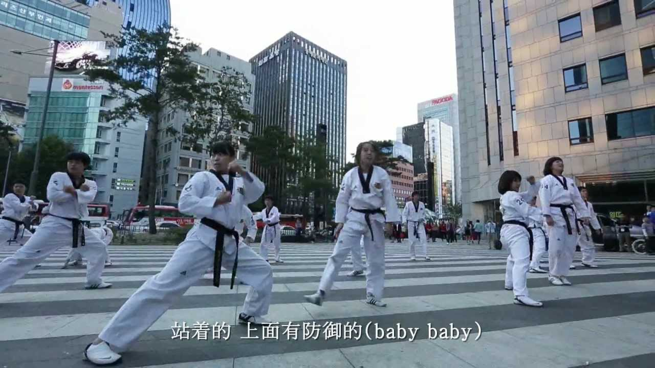 Taekwonstyle (Gangnamstyle)