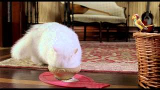 Stuart Little 2 - Trailer