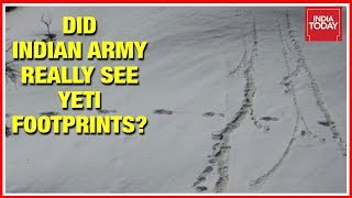 Mythical 'Yeti' Footprints Spotted At Makalu Base Camp In Nepal, Indian Army Shares Pics