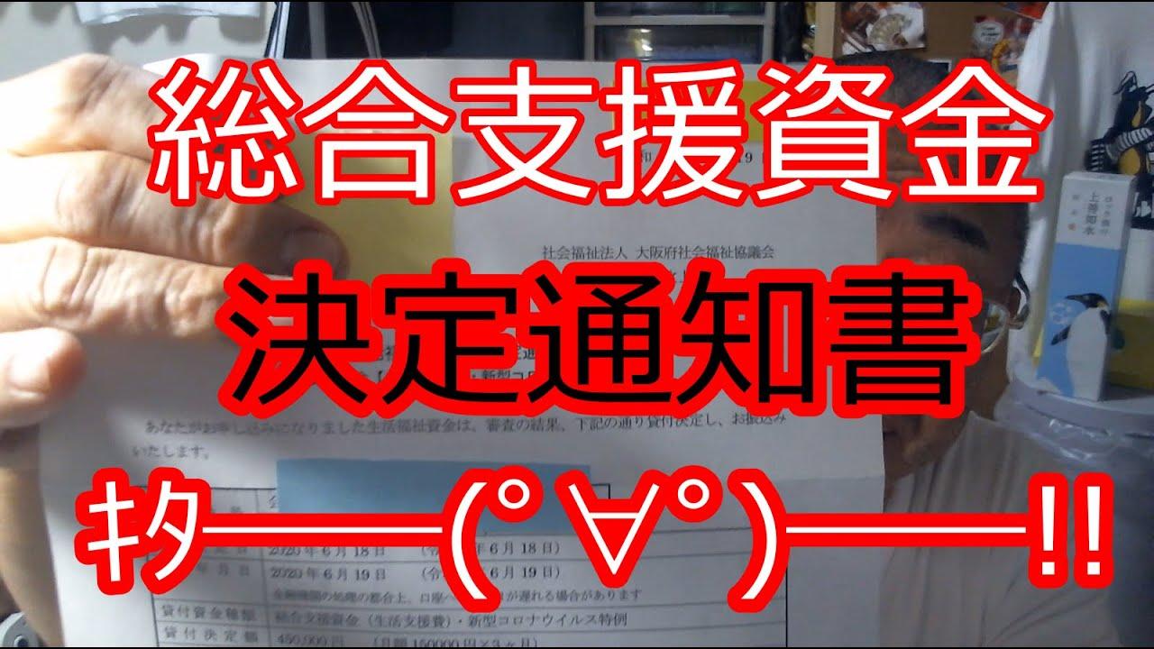 資金 落ち 支援 総合 審査
