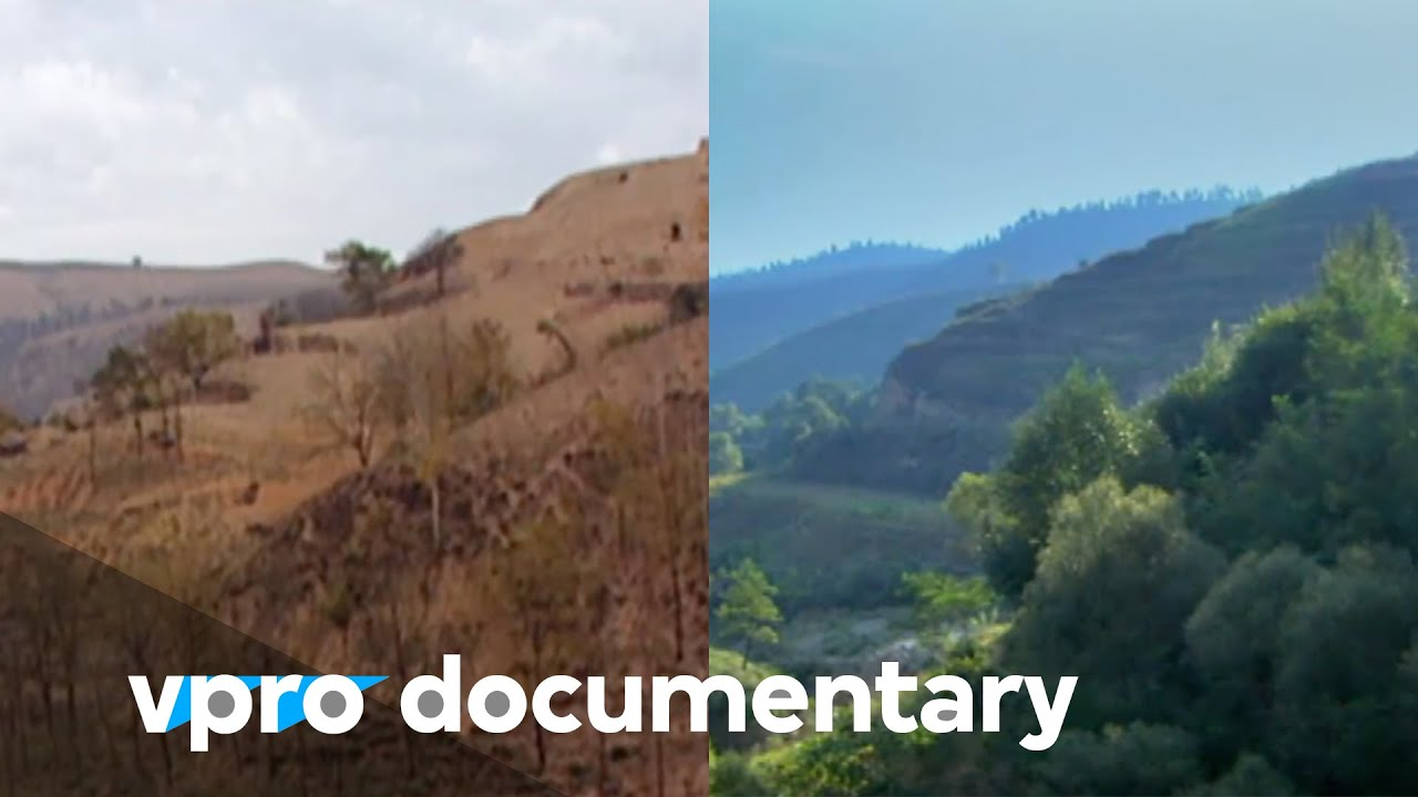 Regreening the desert with John D. Liu | VPRO Documentary | 2012 #1