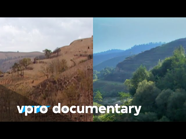 Regreening the desert with John D. Liu | VPRO Documentary | 2012