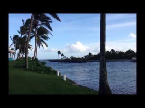 Confira Algumas fotos de Suva, Fiji