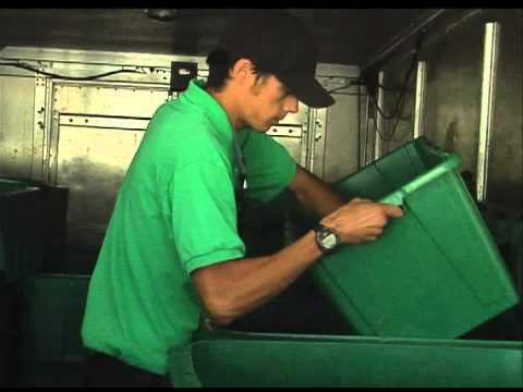 Road to Recycling: Amarillo businesses profit from 'going green'
