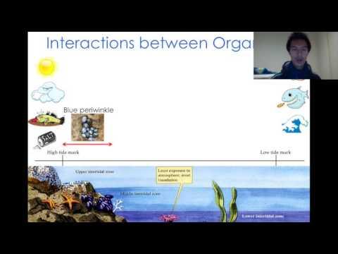 Ch8 L1 Case Study -  Intertidal Ecosystems