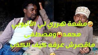 🤣اكبر الشمعات 😝 عندما يجتمع القات الهرري مع القات اليمني جديد مصطفى الشرعبي مع الأثيوبي محمد عارف