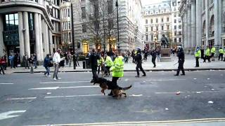G20 protest London 2009 - Police dog bites man