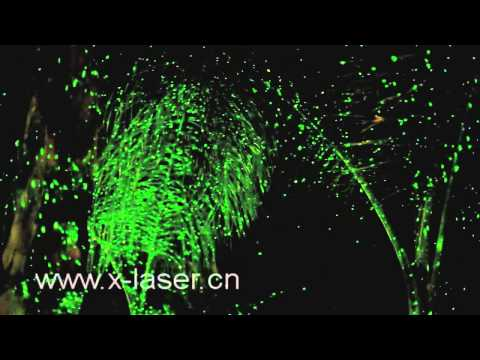 Blue and green landscape laser light for holiday decor