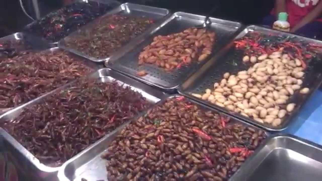 Ulat Dan Serangga Makanan Di Thailand Youtube